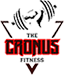 Best Gym near me in RT Nagar Bangalore - The Cronus Fitness